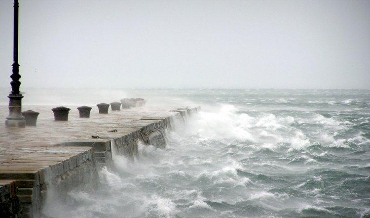 Los fuertes vientos han causado 50 incidencias en la provincia de Cádiz